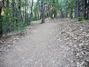 4_Crags-Trail1