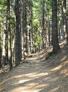 5_Crags-Trail2