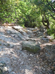 6_Crags-Trail-Up2