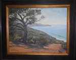 #72 Cleer Day - Torrey Pines State Park