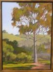 #87 Lone Eucalyptus, Refugio State Beach