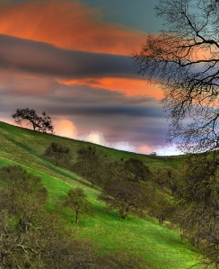 Third Place: Mount Diablo State Park by Shailesh Vyas