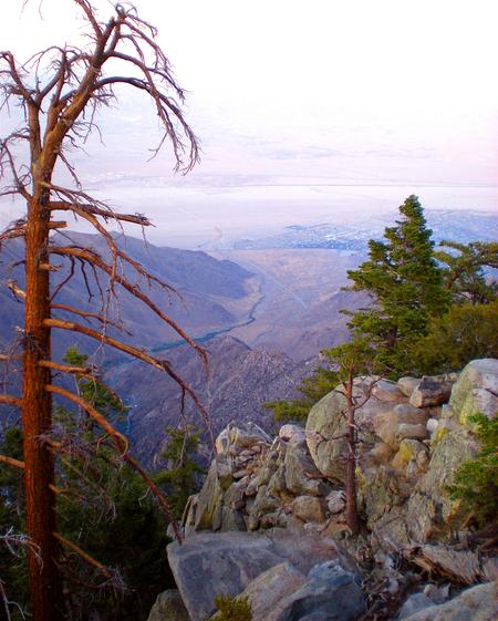 Mount San Jacinto State Park. Photo by David Herholz.