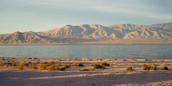 Valentine Blog Salton Sea